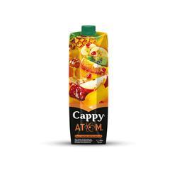 CAPPY ATOM MEYVƏ SUYU  1 LT