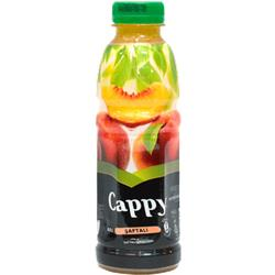 CAPPY ŞAFTALI 0.5L